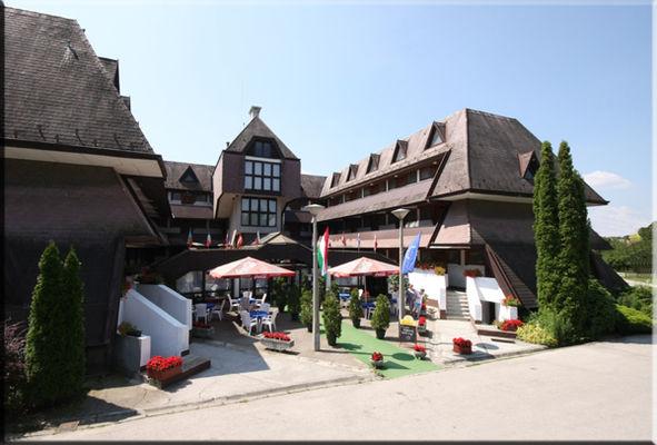 Viking Hotel, Agárd