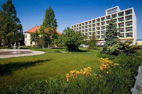 Arany Homok Business and Wellness Hotel, Kecskemét
