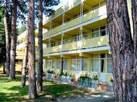 ¡Pinche aquí para ver más fotos de Hotel Natura!