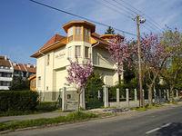 Für weitere Fotos von Villa Sakura Pension hier klicken